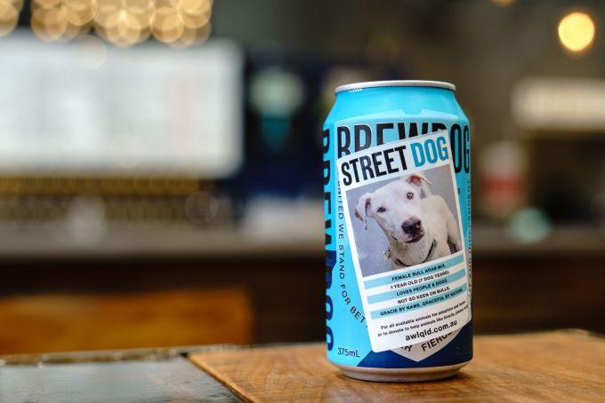 street dog Punktuation